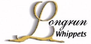 Longrun Whippets