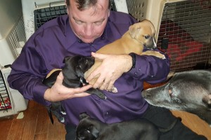 How many pups can Dad hold at once? Mama Tutu is watching!