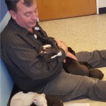Tired pups crashing out with Bill at the vet school.